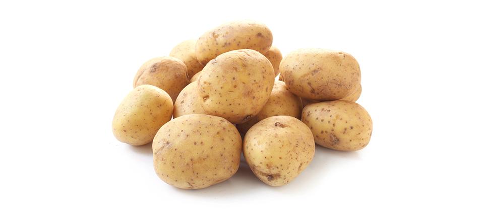 Conservación de la Patata