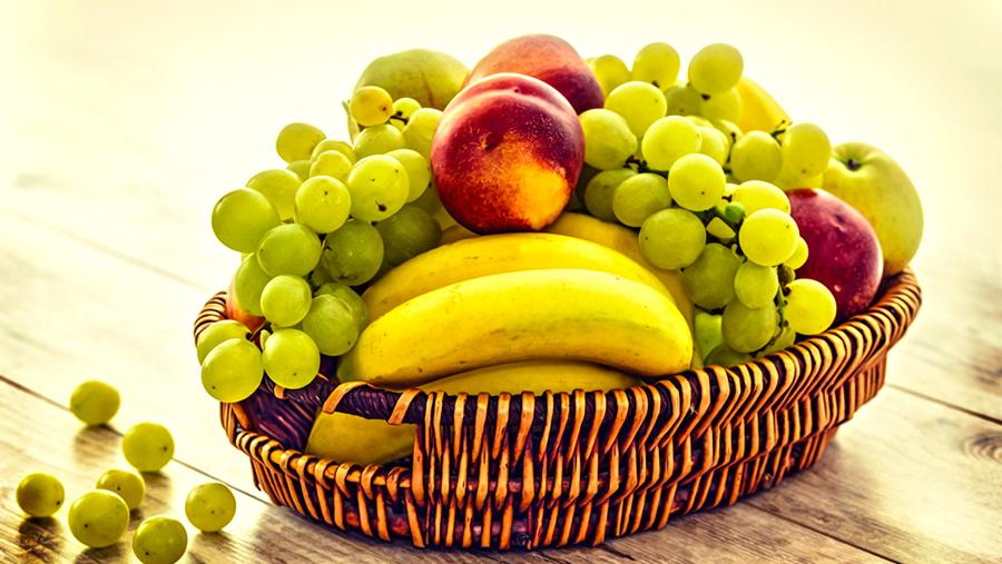Los principios de la conservación de alimentos
