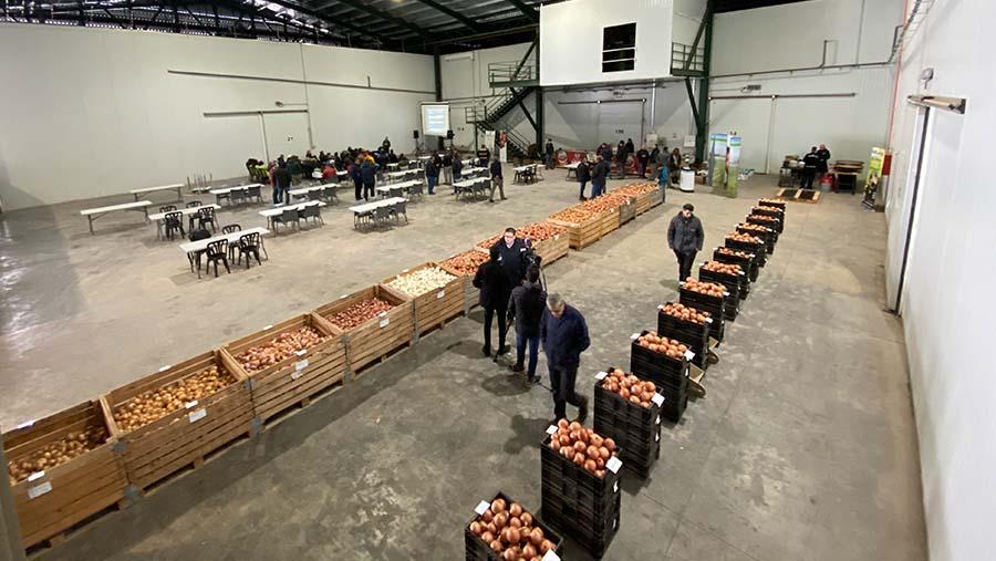 II Jornadas de puertas abiertas de cebolla de almacenaje Bejo Spain 2019 en Ferroice