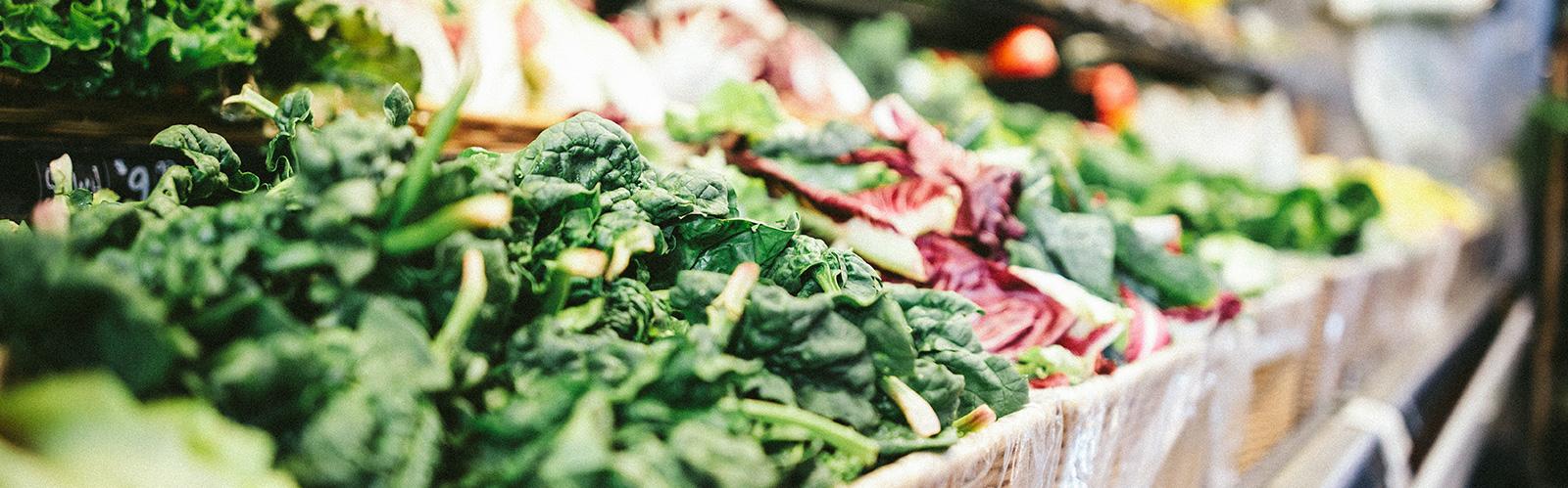Imagen Vegetales