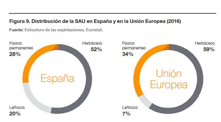 Distribución de la SAU en España y en la Unión Europea (2016)