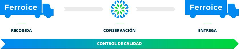 Nuestro proceso de conservación en Ferroice